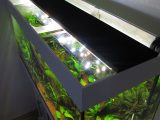 Aquarium Led Beleuchtung Selber Bauen Schullebernds Technikwelt pertaining to measurements 1024 X 1365