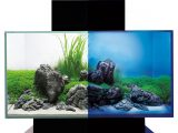 Fluval Edge 20 46 L Aquarien Set Schwarz Mit Led Beleuchtung H 15038 pertaining to measurements 1000 X 1000